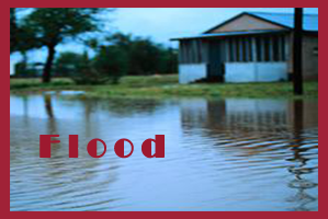 Flood Ins